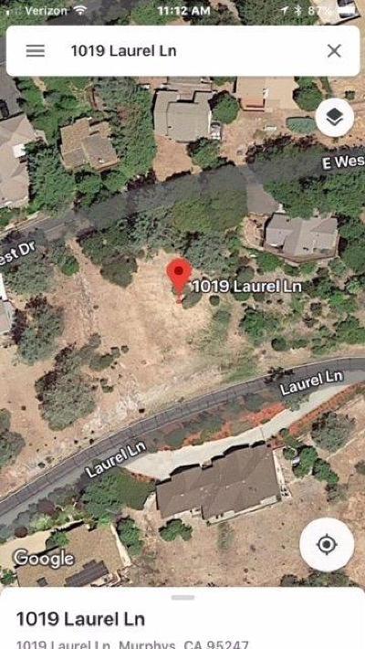 Residential Lots & Land For Sale: 1019 Laurel Lane