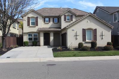 Elk Grove Single Family Home For Sale: 9263 Fife Ranch