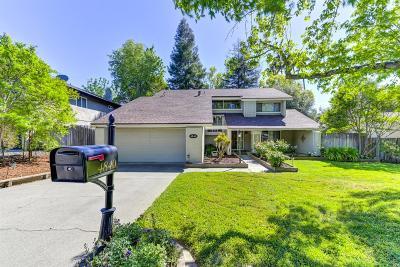 Sacramento County Single Family Home For Sale: 4840 Thor Way