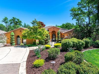 El Dorado Hills Single Family Home For Sale: 6105 Aldea