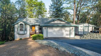 Foresthill Single Family Home For Sale: 6281 Green Ridge Drive