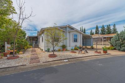 Sacramento County Single Family Home For Sale: 7304 Golden Circle