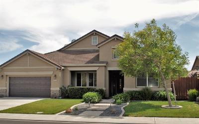 Manteca Single Family Home For Sale: 256 Pear Tree Street