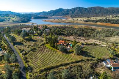 El Dorado County Single Family Home For Sale: 1501 Hidden Bridge Road
