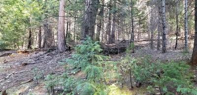 Pioneer Residential Lots & Land For Sale: 19300 Creek Drive