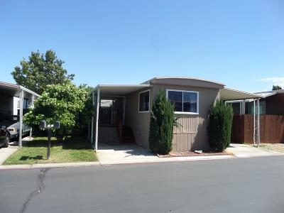 Lathrop Mobile/Manufactured For Sale: 15820 South Harlan Road #101