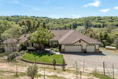 Placerville Single Family Home For Sale: 3525 Thorson Drive