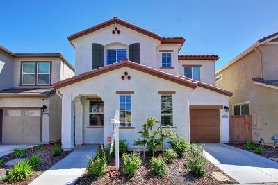 Rancho Cordova Single Family Home For Sale: 10982 Merrick Way