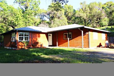 El Dorado County Single Family Home For Sale: 981 Los Robles Road