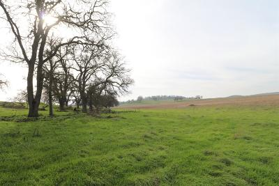 San Joaquin County Commercial Lots & Land For Sale: 22201 North Cord Road