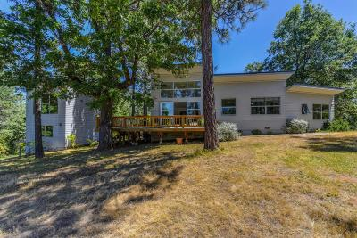 Amador County Single Family Home For Sale: 22080 Fiddletown Road
