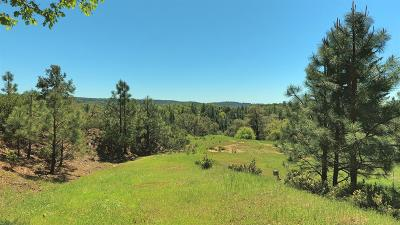 Fiddletown Residential Lots & Land For Sale: 18451 Wildlife Trail