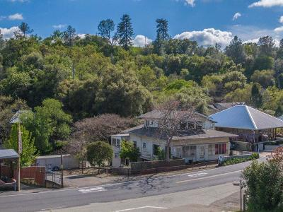 Amador City Single Family Home For Sale: 14235 South Highway 49