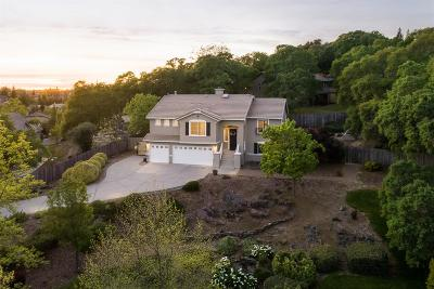 El Dorado Hills Single Family Home For Sale: 2203 Summer Drive