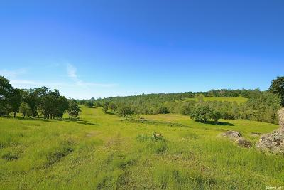Amador County Commercial Lots & Land For Sale: Hwy 16
