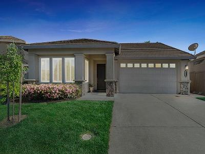 El Dorado Hills Single Family Home For Sale: 4063 Ironwood