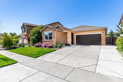 Placer County Single Family Home For Sale: 316 Bramble Court