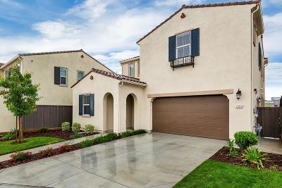 El Dorado Hills Single Family Home For Sale: 1084 Yucca Drive