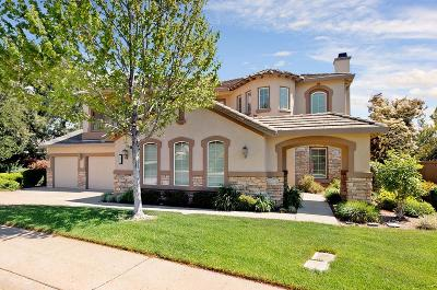 El Dorado Hills Single Family Home For Sale: 1375 Souza Dr