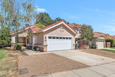 Placer County Single Family Home For Sale: 4003 Lowdan Lane