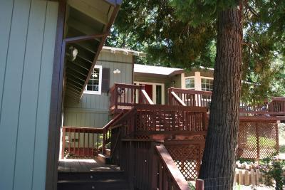 Foresthill Single Family Home For Sale: 20460 Bellwood Court