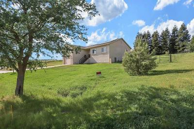 Valley Springs Single Family Home For Sale: 1938 Blake Lane