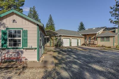 Nevada City Single Family Home For Sale: 13593 Sailor Flat Road