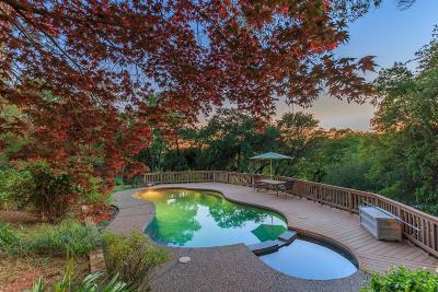Auburn Single Family Home For Sale: 213 Merrow Street