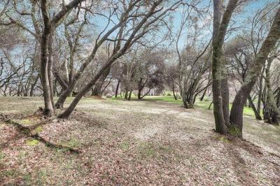 Shingle Springs Residential Lots & Land For Sale: 2531 Sleepy Hollow Drive