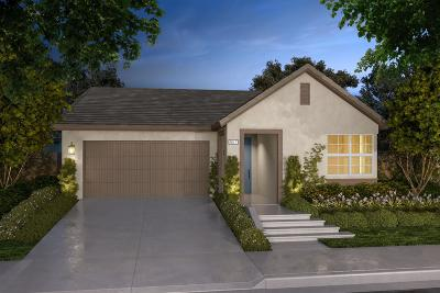 Rocklin Single Family Home Pending Sale: 806 Clementine Drive