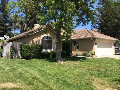 Elk Grove Single Family Home For Sale: 7435 Brandamore Court