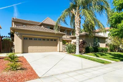 Mountain House Single Family Home For Sale: 41 Felicia Way