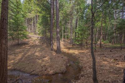 Pollock Pines Residential Lots & Land For Sale: 4680 Jenkinson Circle