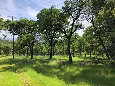 Pilot Hill Residential Lots & Land For Sale: 1200 Hidden Ridge Trail