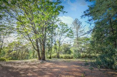Colfax Residential Lots & Land For Sale: Steamers Ravine