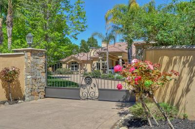 Granite Bay Single Family Home For Sale: 6185 Seven Cedars