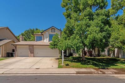 Roseville Single Family Home For Sale: 1704 Pinion Drive