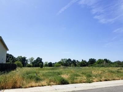 Sacramento Residential Lots & Land For Sale: 190 Sugnet Way
