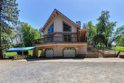 Placerville Single Family Home For Sale: 4255 Savage Road