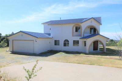 Valley Springs Single Family Home For Sale: 3283 Hagen Rd
