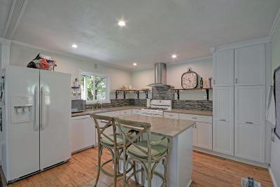 Amador County Single Family Home For Sale: 17305 Hale Road