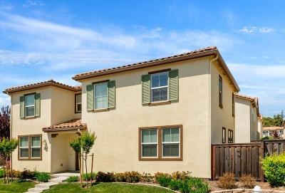 Fair Oaks Single Family Home For Sale: 8155 Astaire Lane