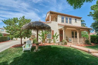 Mountain House Single Family Home For Sale: 663 West Viento Street