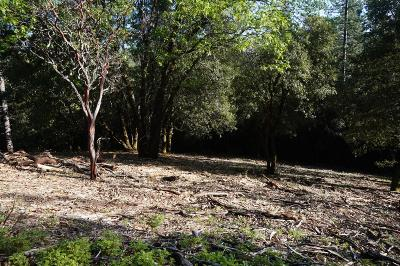 Volcano Residential Lots & Land For Sale: Clute Canyon Rd