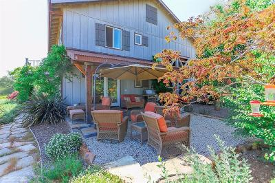 Penn Valley Single Family Home For Sale: 16212 Exit Road