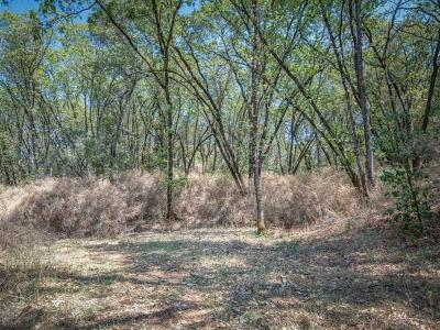 Meadow Vista Residential Lots & Land For Sale: 34 Crystal Lane