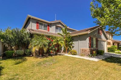 Tracy Single Family Home For Sale: 4549 English Oaks Avenue