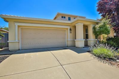 Roseville Single Family Home For Sale: 7617 Millport Drive