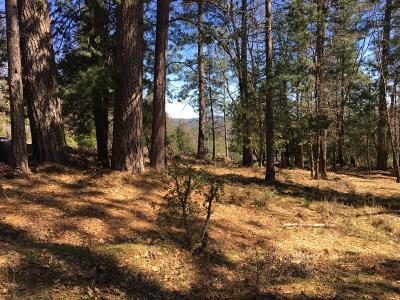 Grass Valley Residential Lots & Land For Sale: 15271 Gregg Lane