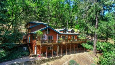 Placerville Single Family Home For Sale: 8830 Mosquito Road